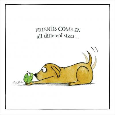 friends sizes card