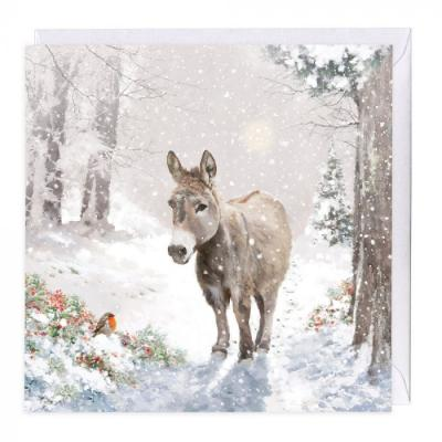 whistlefish donkey and robin christmas card
